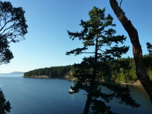 Selby Cove View from Lot. First Time Offered For Sale. Last One of Only 6 Private Properties on Prevost Island. Beautiful Property across from the Gulf Islands National Park and adjacent to the Prevost Island Farm. Contact us via Email: prevostisland@shaw.ca